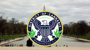 District of Cannabis