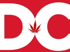DC-NORML-Grower-Edible-Meeting