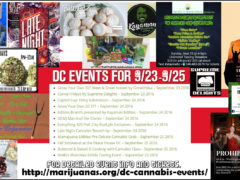 Cannabis weekend of events