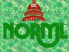 DC NORML I'm Dreaming of a Green Christmas! Party - December 16 2016