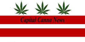 Capital Canna News