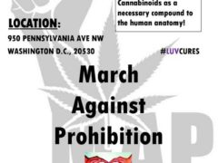Compassionate CBD March for Cancer, Epilepsy, and Veterans - January 14 2017