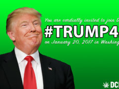 DCMJ: The Inaugural #Trump420 Logistics! Please Read - January 20 2017