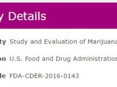 Cannabis Job: Study and Evaluation of Marijuana and Cannabinoids for FDA