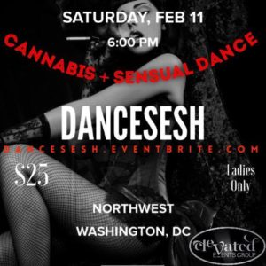 DanceSESH Hosted by Elevated Events Group - February 11 2017