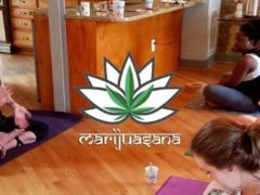 Marijuasana in DC - Yoga and Cannabis (CBD) - February March 2017
