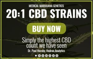 high-cbd-strains