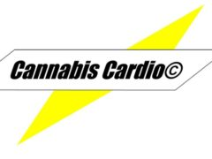 Cannabis Cardio- Power Happy hour - Multiple April 2017 Dates