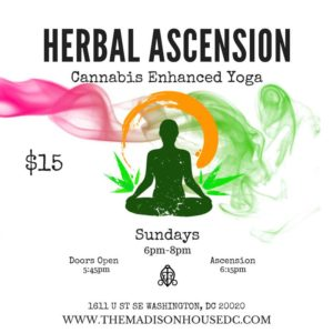 Herbal Ascension Yoga Hosted by The Madison - March 26 2017