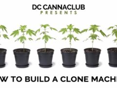 How to Build a Clone Machine at DC Cannabis Co-op Club - March 11 2017