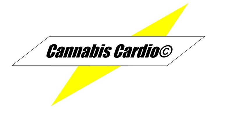 Cannabis Cardio- Power Happy hour by LMN Lifestyle - May 6 2017