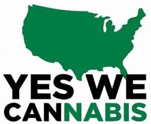 Cannabis and Politics Happy Hour at Duffy's Irish Pub - April 12 2017