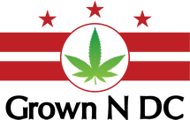 Free 420 Cannabis Celebration by Capitol City Seeds GrownNDC - April 20 2017