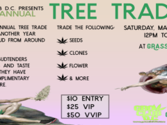 D.C. Tree Trade - Cannabis Trade by Grass & Co - May 27 2017