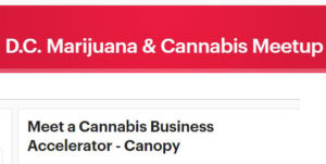 Meet Canopy: A Cannabis Business Accelerator - May 17 2017
