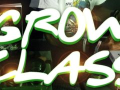 DC Scroger's Grow Class @ Myster by DC SCROGER - June 24 2017