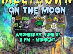 Meltdown on the Moon Hosted by Terpy Consultations - June 21 2017