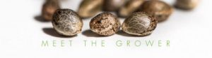 Meet the Grower Hosted by Capital City Care - August 3 2017
