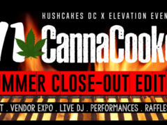 i71 CannaCookout: Summer Closeout by Cloud Events DC - August 27 2017
