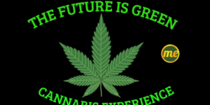 "Mamajuana Edibles ""The Future Is Green"" Cannabis Experience - September 9 2017"