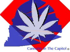 Cannabis In The Capitol Hosted by Cannabis in the Capitol - October 20 2017