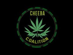 Cheeba Coalition | Washington DC Marijuana Events
