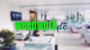 Weed Work DC Hosted by Elevated Events Group - October 2 2017