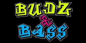 BUDZ N BASS by PartyBandz, LLC - October 10 2017