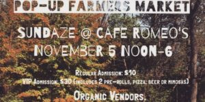 Pop up Farmers Market by HerbaceousDC - November 5 2017