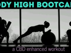 Body High Bootcamp Hosted by Caniventures - December 9 2017