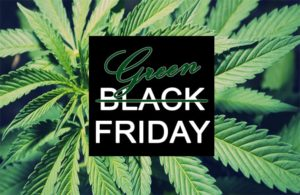 Green Friday @ Listen Vision studios - November 24 2017