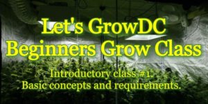 Let's Grow DC! Beginners Cannabis Grow Course - November 2017 Dates