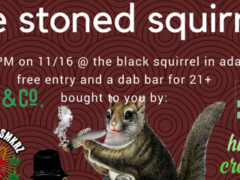 The Stoned Squirrel Hosted by Grass&Co. - November 16 2017
