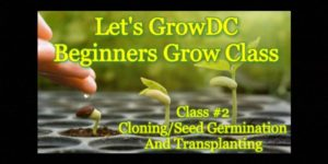 Beginners Grow Course Class 2 Cloning/Seed Germination and Transplanting (DC) February 21 2018