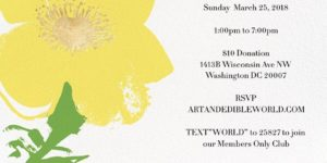 ART & EDIBLE SUNDAY FUNDAY (DC) March 25 2018