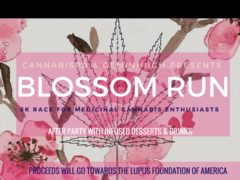 Blossom Run by CannabiSpa DC and Geminhiigh (DC) April 20 2018