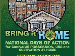 Bring It Home: Veteran's Protest Hosted by DOPE Fest and DCMJ (DC) April 3 2018