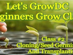 Let's Grow DC! Beginners Grow Course. Class #2: Cloning Seed Germination (DC) April 4 2018
