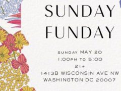 ART & EDIBLE WORLD SUNDAY FUNDAY (DC) May 20 2018