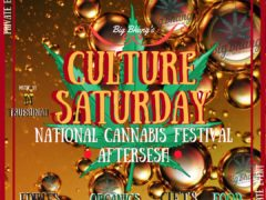Culture Saturday-National Cannabis Day Festival Aftersesh Party!! by Big Bhang (DC) April 21 2018