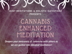 Enhanced Guided Meditation by Joint Meditations (DC) April 8 2018
