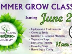 Elevated Roots Academy - Summer Grow Classes by Frida's Kitchen (DC)