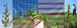 Hemp Lobby Day (DC) June 7 2018