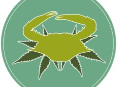 Maryland Cannafest (MD) June 10 2018