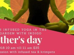 Outdoor Canna Infused Yoga with Mommy & Me by Joint Meditations (DC) May 13 2018