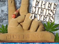 Free MEDS! for Veterans Hosted by Dr.Trichome (DC) July 2 2018