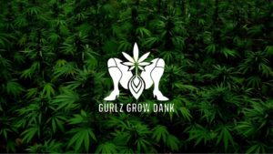 Infusions Hosted by Gurlz Grow Dank (DC) September 15 2018