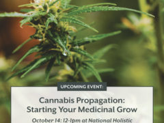 Cannabis Propagation: Starting your Medicinal Grow (DC) October 14 2018