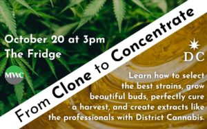 From Clone to Concentrate with District Cannabis (DC) October 20 2018