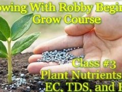 Growing With Robby Beginner's Grow Course Class #3 Nutrients, PH, EC, TDS (DC)